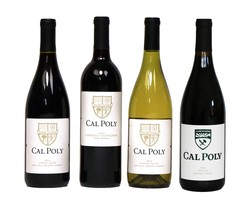 Case Value Pack- 12 Bottles of Cal Poly Wine